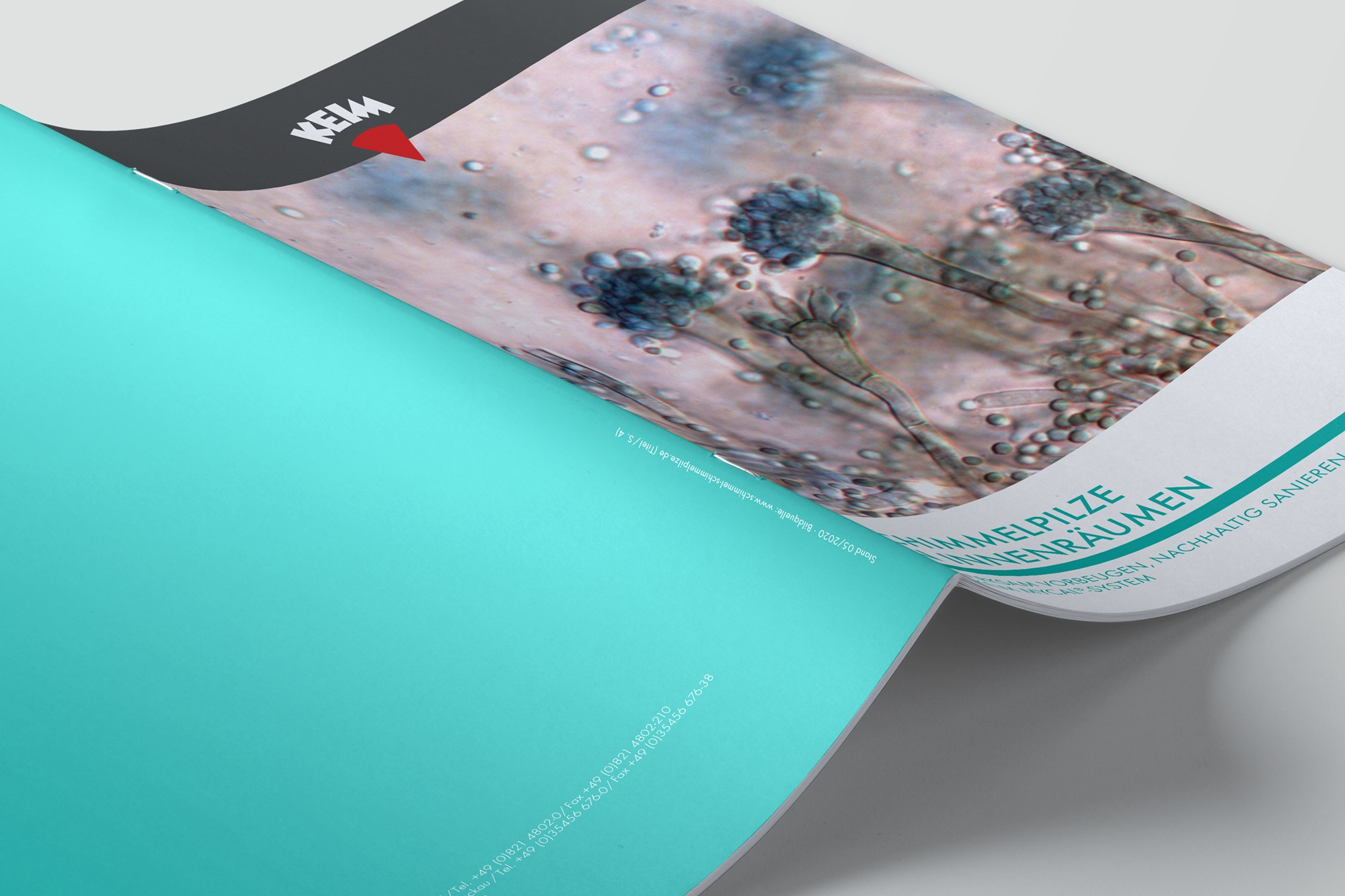 Studio dos, Grafikdesign Osnabrück, Keimfarben Schimmelbroschüre Cover aufgeklappt